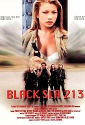 Черное море 213