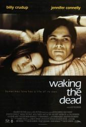 Пробуждая мертвецов (4)